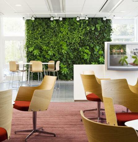bespoke artificial green wall for office decoration Gallery Image