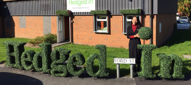 Hedged In top quality artificial hedge supplier Gallery Image