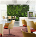 bespoke artificial green wall for office decoration Gallery Thumbnail