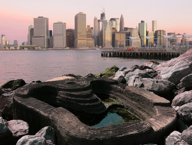 ECOncrete Tide Pools New York  Gallery Image
