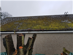 Roof Clean & Moss Inhibitor Treatment
