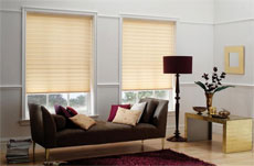 Albany Blinds Edinburgh Image